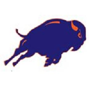 Fenton Bison